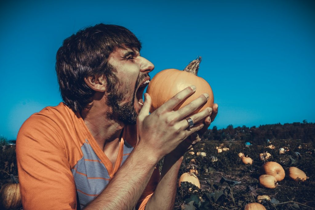 starving artist myth debunked